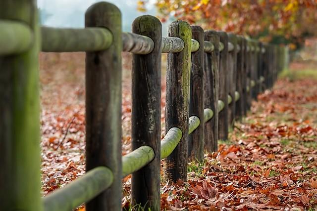 Une clôture de jardin.
